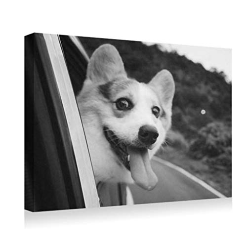 SHADENOV Canvas Prints Wall Art - Dog Muzzle Box car - Modern Home Deoration Wall Decor Printing Wrapped Stretched Canvas Art Ready to Hang 28x20 Inches Black and White ()