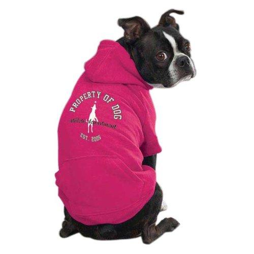 Dog Is Good Solid Hoodie, X-Large, Raspberry Sorbet
