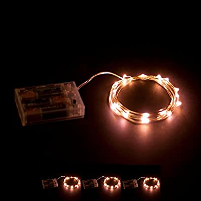 RTGS 20 Warm White Color Micro LED String Lights Battery Operated on 7.5 Feet Silver Wire