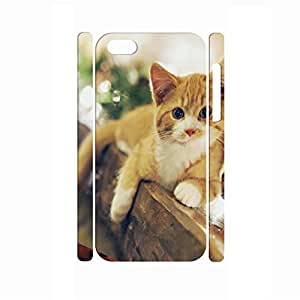 Charm Hipster Antiproof Animal Series Cat Pattern Skin for Iphone 5C Case