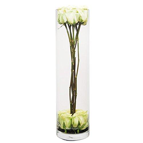 CYS GCY055/24 6 Piece Glass Hand Blown Cylinder Vase, 24