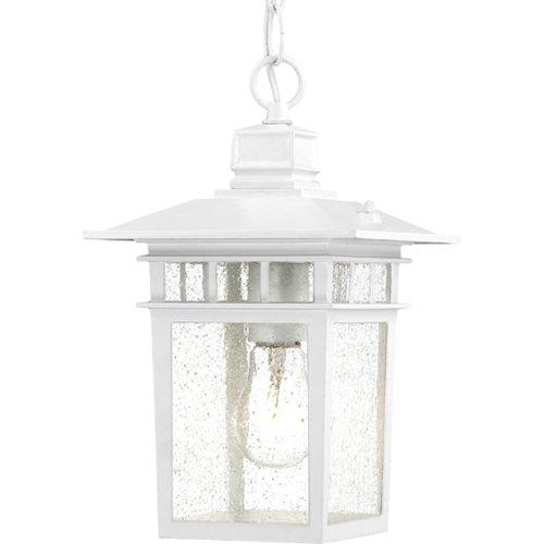 White Outdoor Hanging Light Fixture in US - 4