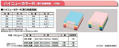 厚口色画用紙(ハイニューカラーR) 全判100枚(一般色) 317 あか