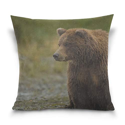 Sitting Bear Case - RH Studio Pillow Case Bear Sitting Thick Sofa Bed Pillow Case Cover 18 X 18 Inch Twin Sides