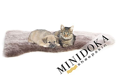 Desert Breeze Distributing Minidoka Sheepskin Pet Bed, Mocha Brown, Spring Lamb Pelt, for Dog or Cat, Natural Length Silky Soft Wool