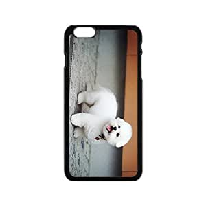 Bolognese Hight Quality Plastic Case for Iphone 6