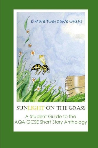 Sunlight on the Grass:A Student Guide to the AQA Short Story Anthology