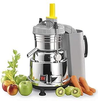 Vema - Extractor autolimpiable CE 2047/ABS para zumos de frutas y ...
