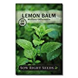 Sow Right Seeds - Herbal Tea Collection - Lemon