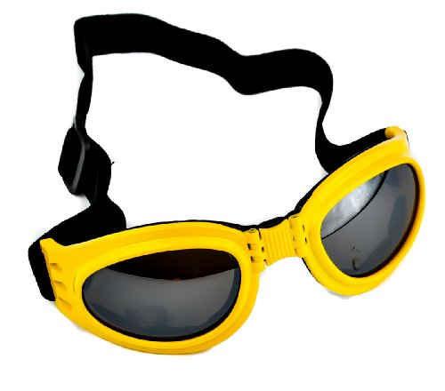 Yellow Frame Anime Goggles Vampire Sport Sunglasses