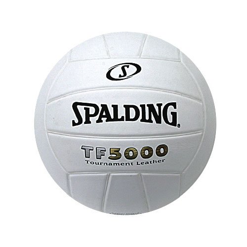 SP TF5000 VOLLEYBALL LEATHER INDOOR