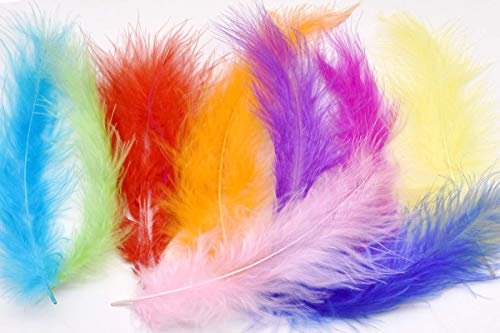 TommoT 100pcs Turkey Feathers for Crafts and Art Home Decor-Colorful