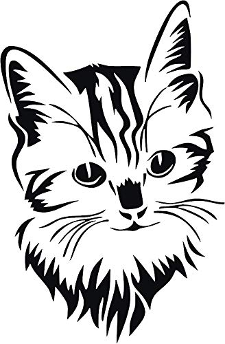 Amazon Com Family Connections Cat 2 Vinyl Decal Sticker For Window