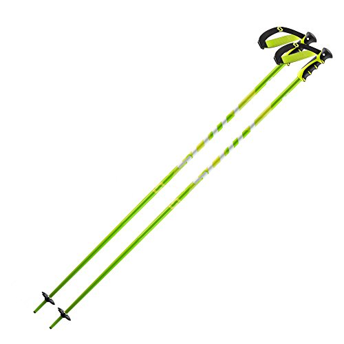 Scott Punisher Ski Poles