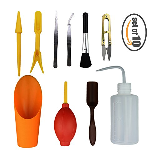 NOBBEE Gardening Tools Kit Set of 10 Succulent Transplanting Care Mini Garden Hand Tools for Planting Cacti Little Pot Plants (Orange) (Care Succulents)
