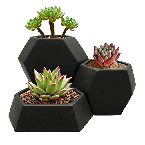 Modern Geometric Ceramic Succulent Cactus Planter Pot (Set of 3) with Black Matte Finish