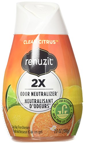Renuzit Citrus Sunburst Air Freshener 7.0 oz (Pack of 12) (Citrus Air Freshener)