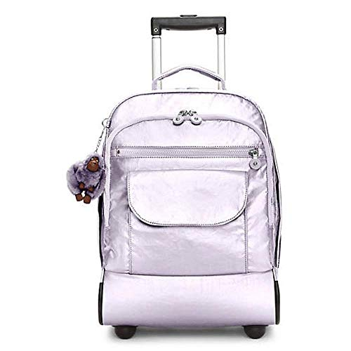 DBSCD Travel Wheeled Rolling Trolley Backpack Suitcase Hand Luggage Cabin Laptop PC Tablet Computer Bag Suitable for…