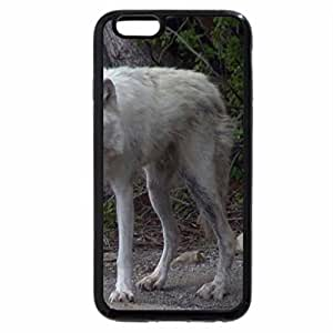 iPhone 6S / iPhone 6 Case (Black) the lone wolf