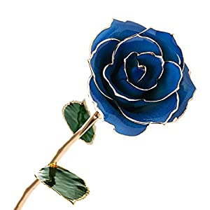 Amazleer Love Forever Long Stem Dipped 24k Gold Foil Trim Purple Rose Enchantress Flora with Thorns Real Rose Dipped in Gold 107
