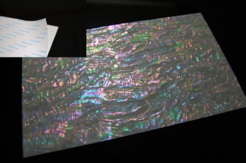 Prism Abalone Wide Shell Coated Adhesive Veneer Sheet