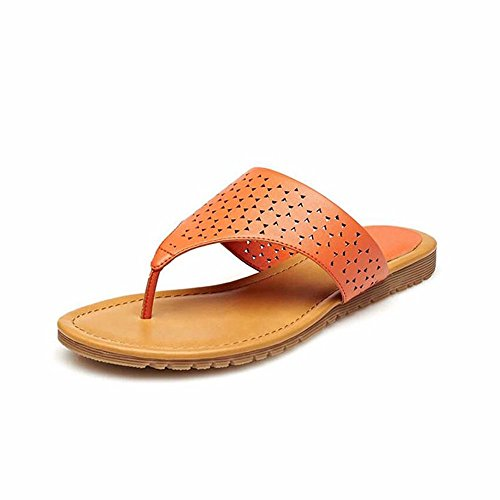 pantofole cool piatto Estate sandali donna scavata moda fondo casual gules YMFIE agwAEqn