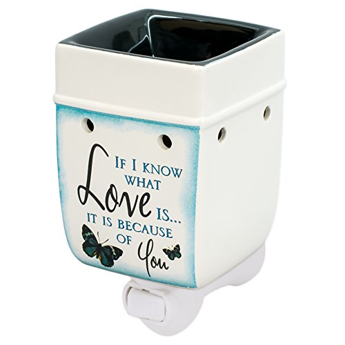 Elanze Designs Love You Blue Butterfly Ceramic Stoneware Electric Plug-in Outlet Wax and Oil Warmer