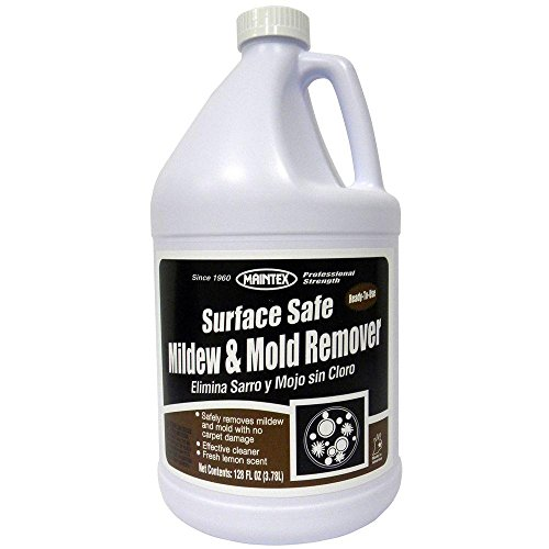 Maintex 1 Gal. Surface Safe Mildew and Mold Remover (Surface Mold)