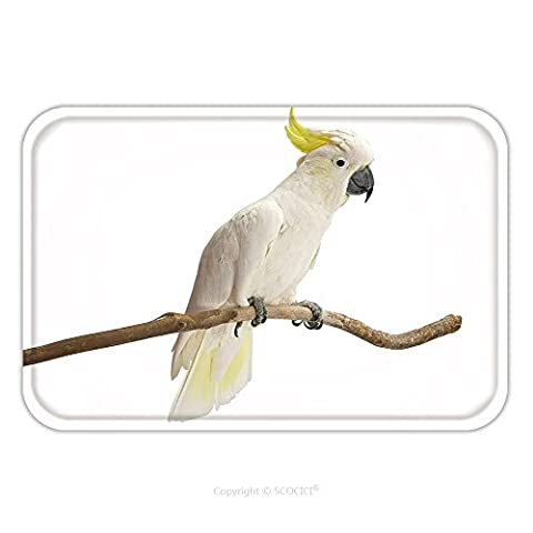 Flannel Microfiber Non-slip Rubber Backing Soft Absorbent Doormat Mat Rug Carpet Sulphur Crested Cockatoo Cacatua Galerita Perched In Front Of A White Background 125702477 for - Echelon Echelon Shower Locker
