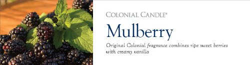 Colonial Candle 22-Ounce Scented Oval Jar Candle, Mulberry