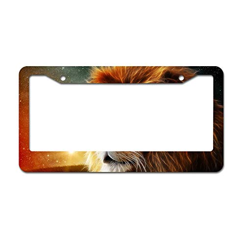 DKISEE Abstract 3D Lion Animal S License Plate Frame Aluminum Car License Plate Covers with 2 Holes 12