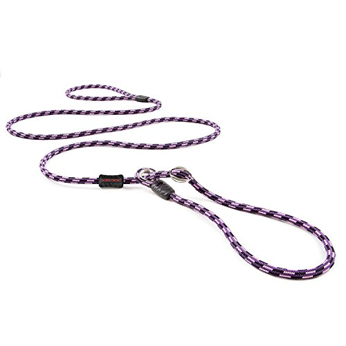 EzyDog Luca All-In-One Slip Collar Climbing Rope Dog Leash Combo - Best Dog Lead for Control, Training, Correction, and Exercising - Perfect for Small Dogs (Lite, Purple) ()