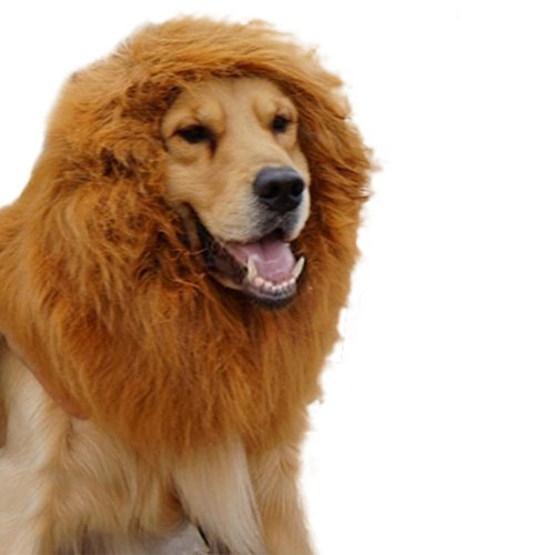 [Broadfashion Large Pet Costume Lion Mane Wig for Dog Christmas Halloween Clothes Festival Fancy Dress] (Dog Lion Costume Large)