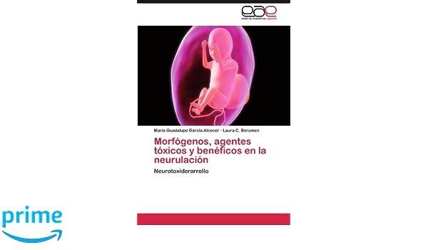 Morfogenos, Agentes Toxicos y Beneficos En La Neurulacion: Amazon.es: Mar a. Guadalupe Garc a. Alcocer, Laura C. Berumen, Maria Guadalupe Garcia Alcocer: ...