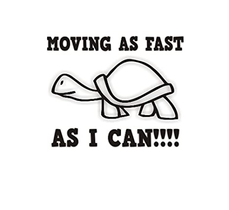 Sea View Stickers Moving As Fast As I Can Tortoise Car Sticker - Black