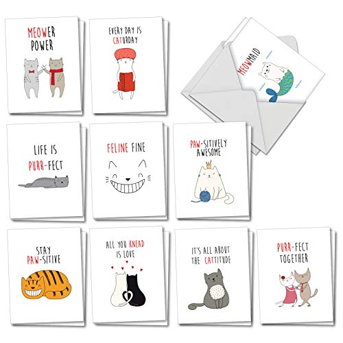 (Cat Got Your Tongue: 20 Assorted Blank All Occasions Greeting Cards with Cat's Pun Fun, with Envelopes. AM7183OCB-B2x10)