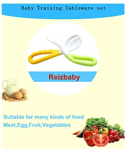 Reizbaby Easy-to-Hold Baby Spoon and Fork Set with Curved Handle Gum-Friendly BPA Free Feeding Gift for Toddlers 6 Pcs by REIZBABY (Image #4)