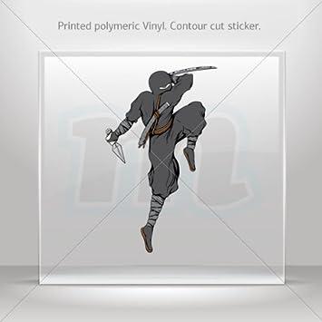 Amazon.com: Sticker Ninja Warrior Decoration Motorbike ...