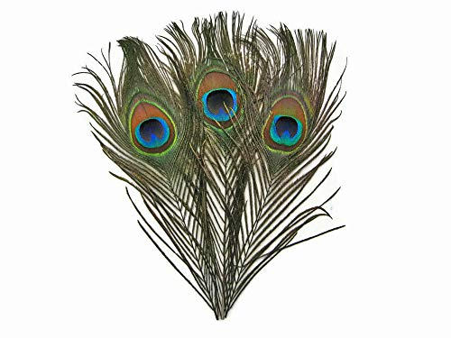 (Moonlight Feather | 10 Pieces - Big Eye Natural Peacock Tail Eye Feathers for Crafts, Costume, Mask, Halloween Green Iridescent Purple Natural Molted Peacock)