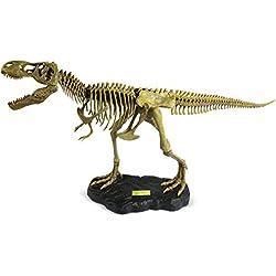 Geoworld Dr. Steve Hunters Paleo Expeditions T-Rex Full Skeleton DIY Building Kit
