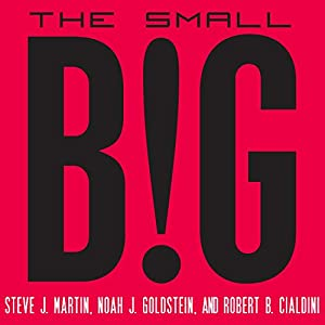 The Small Big Audiobook