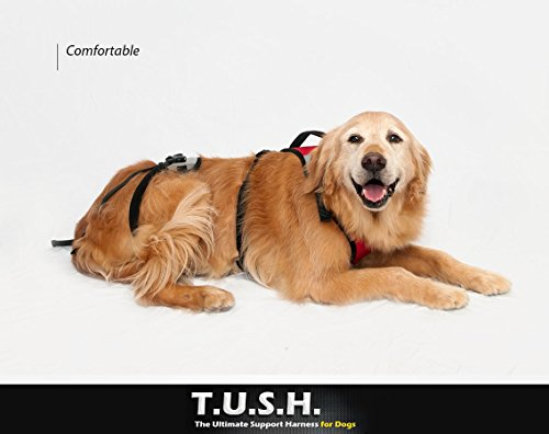 TopDog Health– The Ultimate Support Harness for Dogs (T.U.S.H) – XLarge - Helps Supports Older Dogs Struggling to Get Around or Dogs Recovering from Surgery – Created by a Veterinarian by TopDog Health (Image #4)
