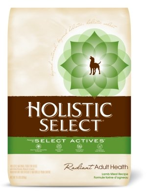 Holistic Select Lamb Meal & Rice Formula With Oatmeal 22/15 For Dogs