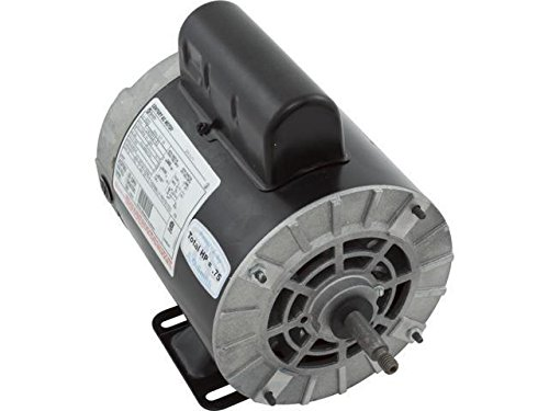 A.O. Smith B232 1HP Pool Motor 230V by A. O. Smith