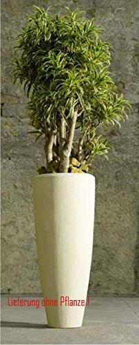 Blumenübertopf Polystone Partner aus gemahlenen Stein und Kunststoff, nur für den Innenbereich geeignet. Farbe Natur, Ø 23cm Höhe 50cm