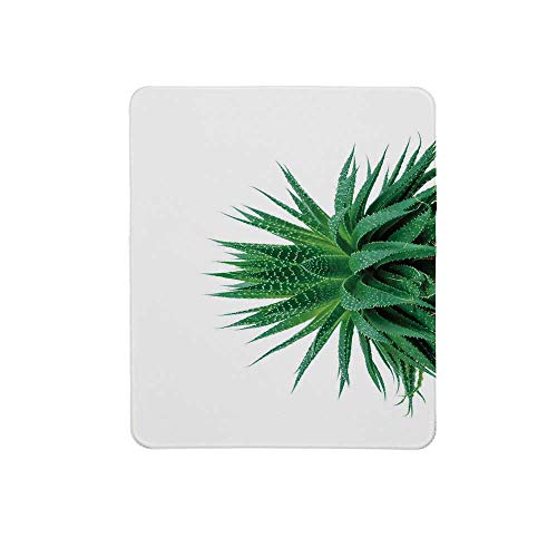 (Plant Non Slip Mouse Pad,Medicinal Aloe Vera with Vibrant Colors Indigenous Species Alternative Natural Remedy for Home & Office,11
