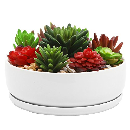 8 inch Modern White Ceramic Round Succulent Planter Pot with Removable Saucer (Bowl Planter Cactus)
