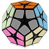 D-FantiX Shengshou 2x2 Megaminx Speed Cube Dodecahedron Puzzle Cubes Black