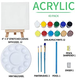 MEEDEN 42-Piece Acrylic Painting Set, 12Mini Beech Wood Easels and 12Stretched Canvas, 12×16ML Acrylic Paint Set, 3Paintbrushes and All The Additional Supplies, Perfect Gift for Kids and Beginners