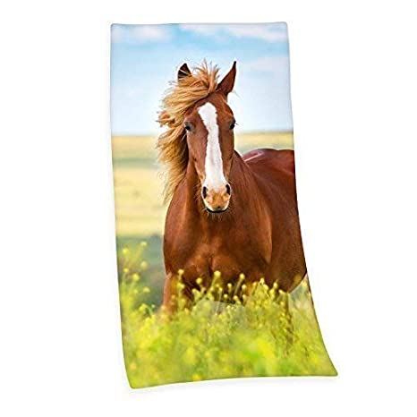 Caballo Pony Toalla de baño Sauna Toalla velouruch 75 x 150cm Regalo Nuevo WOW - all-in-one-outlet-24: Amazon.es: Hogar